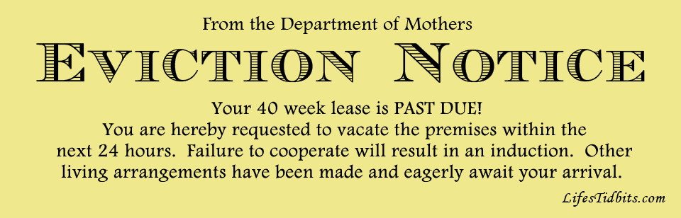Baby Eviction Notice | Life's Tidbits
